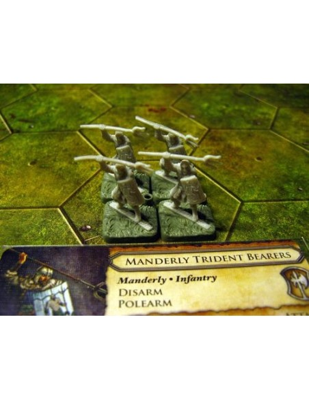 Battleground Fantasy Warfare: Elves of Ravenwood Starter